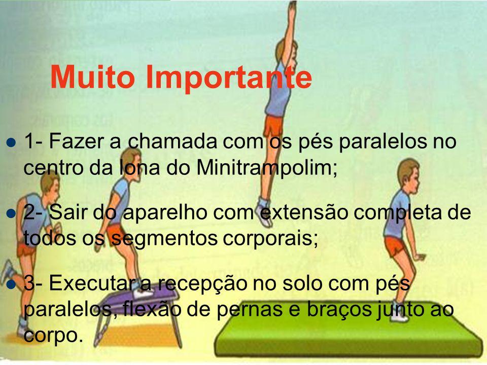 Muito Importante 1- Fazer a chamada com os pés paralelos no centro da lona do Minitrampolim;