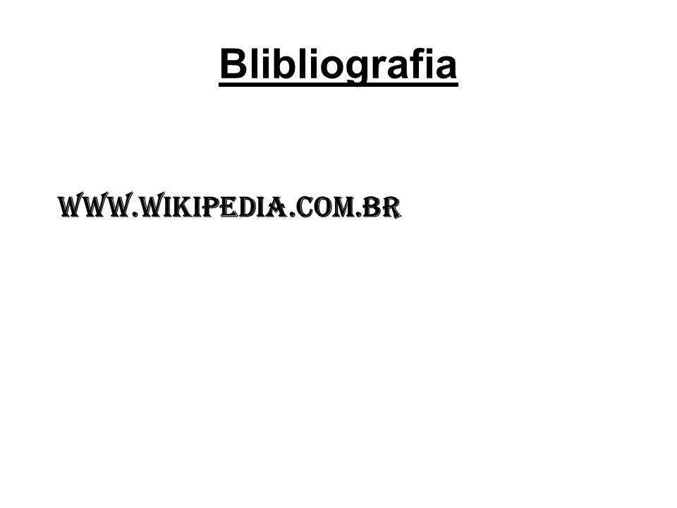 Blibliografia www.wikipedia.com.br
