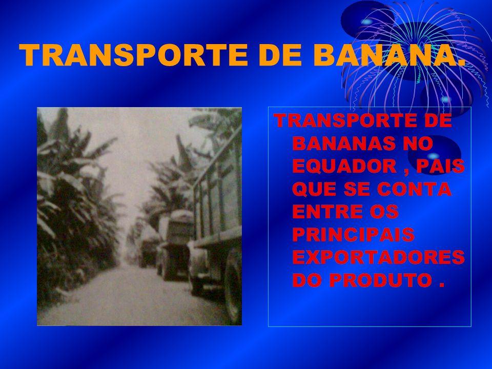 TRANSPORTE DE BANANA.