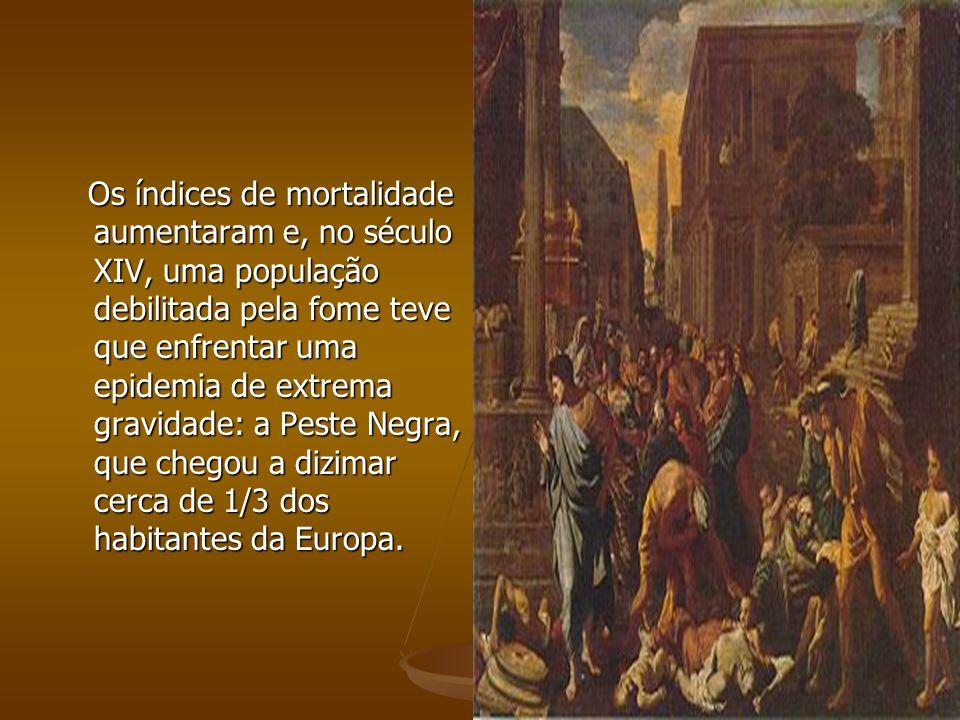 Os índices de mortalidade aumentaram e, no século XIV, uma população debilitada pela fome teve que enfrentar uma epidemia de extrema gravidade: a Peste Negra, que chegou a dizimar cerca de 1/3 dos habitantes da Europa.