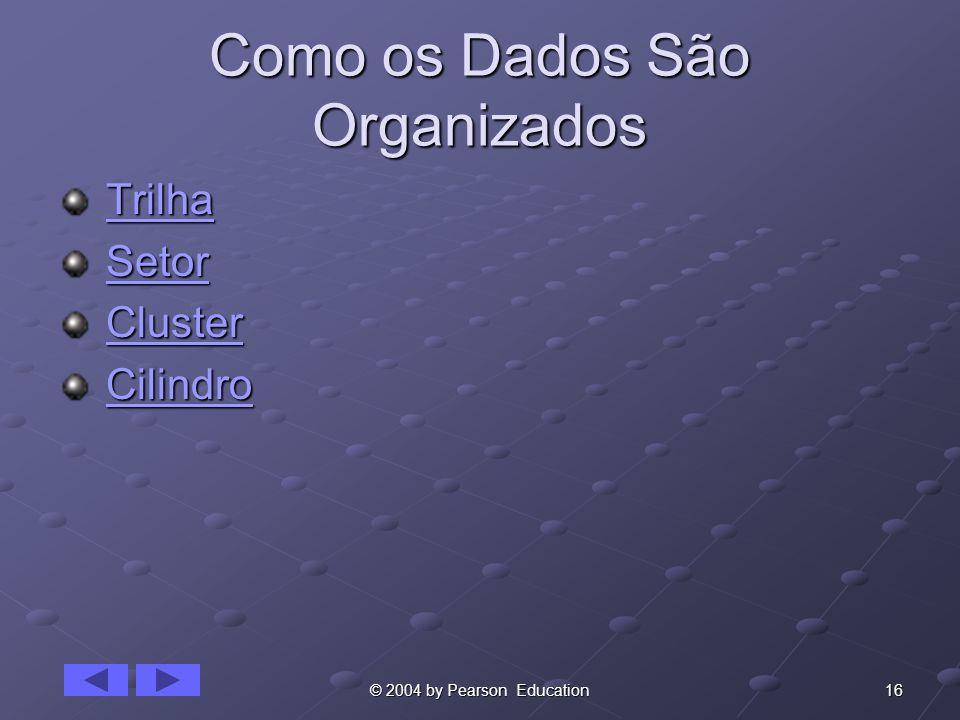 Como os Dados São Organizados