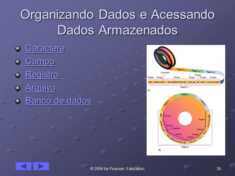 Organizando Dados e Acessando Dados Armazenados
