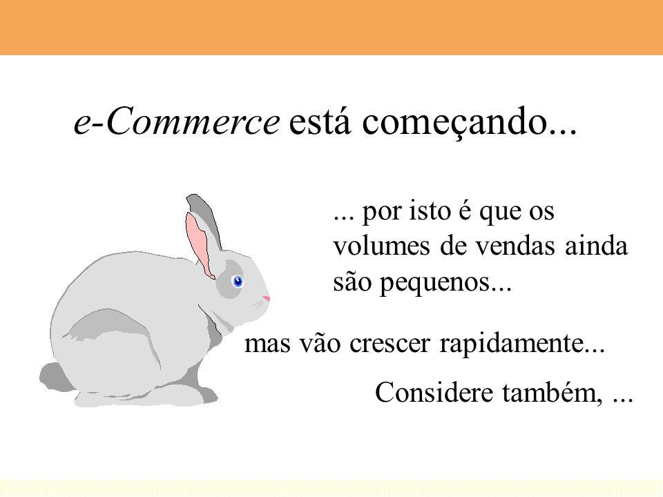 e-Commerce está começando...