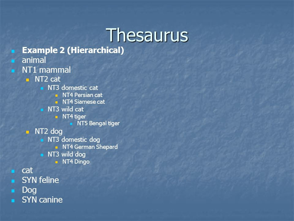 Thesaurus Example 2 (Hierarchical) animal NT1 mammal cat SYN feline