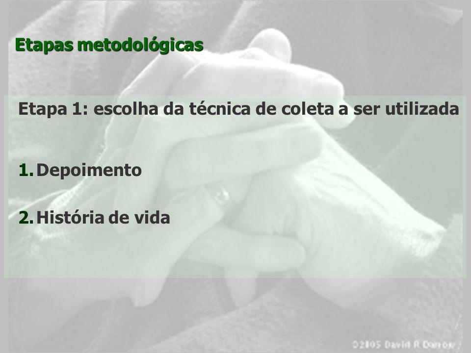 Etapas metodológicas Etapa 1: escolha da técnica de coleta a ser utilizada.