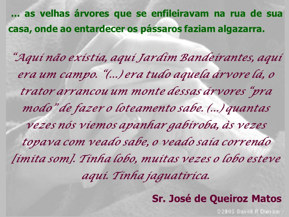 Sr. José de Queiroz Matos