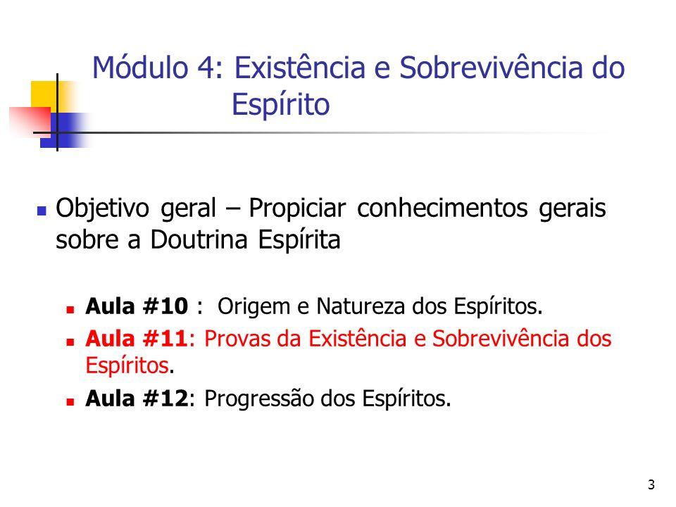 Módulo 4: Existência e Sobrevivência do Espírito