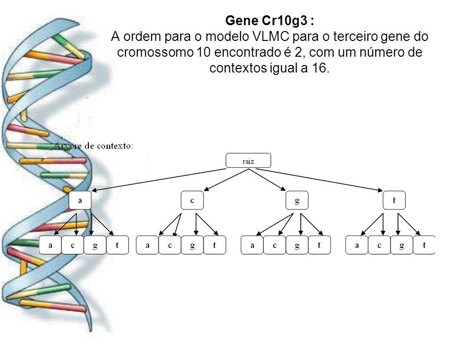 Gene Cr10g3 : A ordem para o modelo VLMC para o terceiro gene do cromossomo 10 encontrado é 2, com um número de contextos igual a 16.