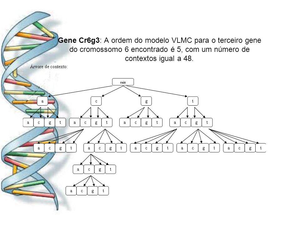 Gene Cr6g3: A ordem do modelo VLMC para o terceiro gene do cromossomo 6 encontrado é 5, com um número de contextos igual a 48.