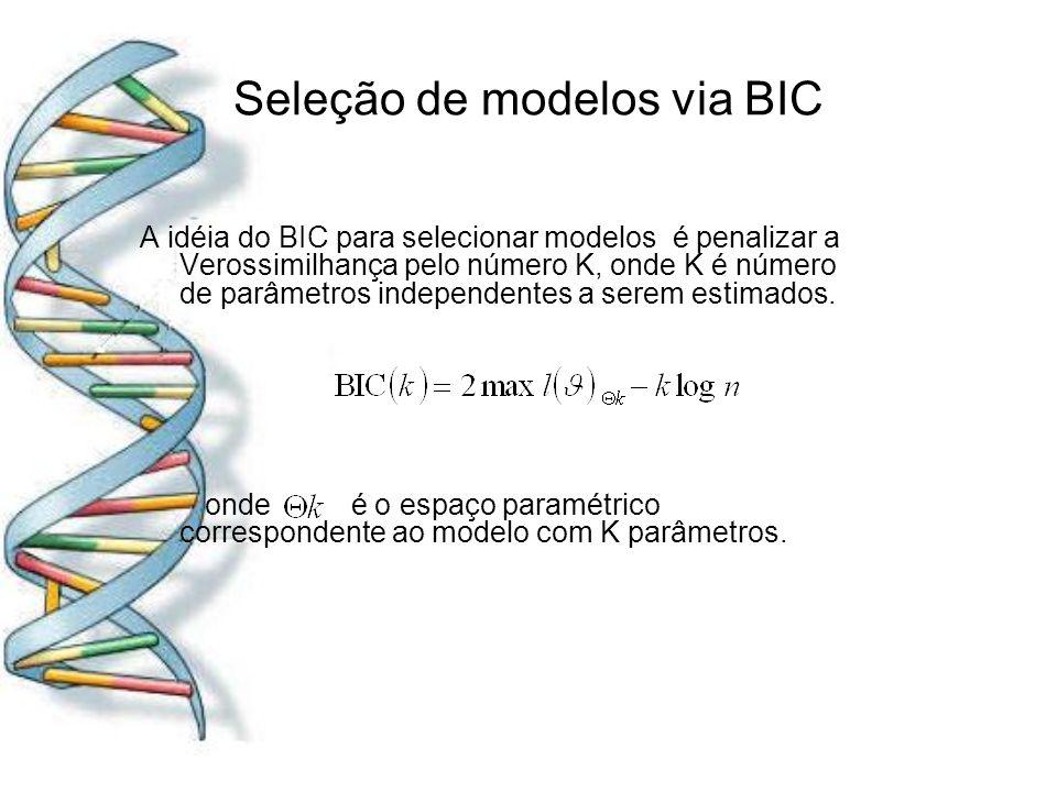 Seleção de modelos via BIC