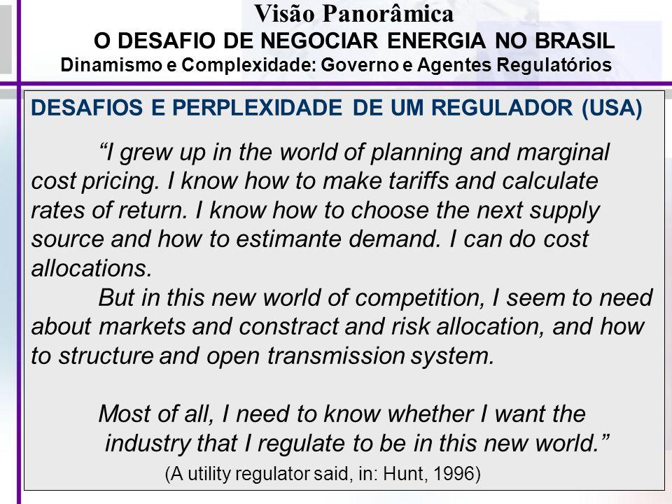 Visão Panorâmica O DESAFIO DE NEGOCIAR ENERGIA NO BRASIL. Dinamismo e Complexidade: Governo e Agentes Regulatórios.