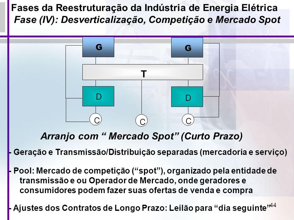Arranjo com Mercado Spot (Curto Prazo)