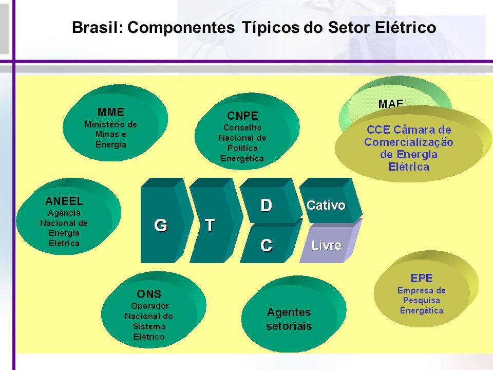 Brasil: Componentes Típicos do Setor Elétrico