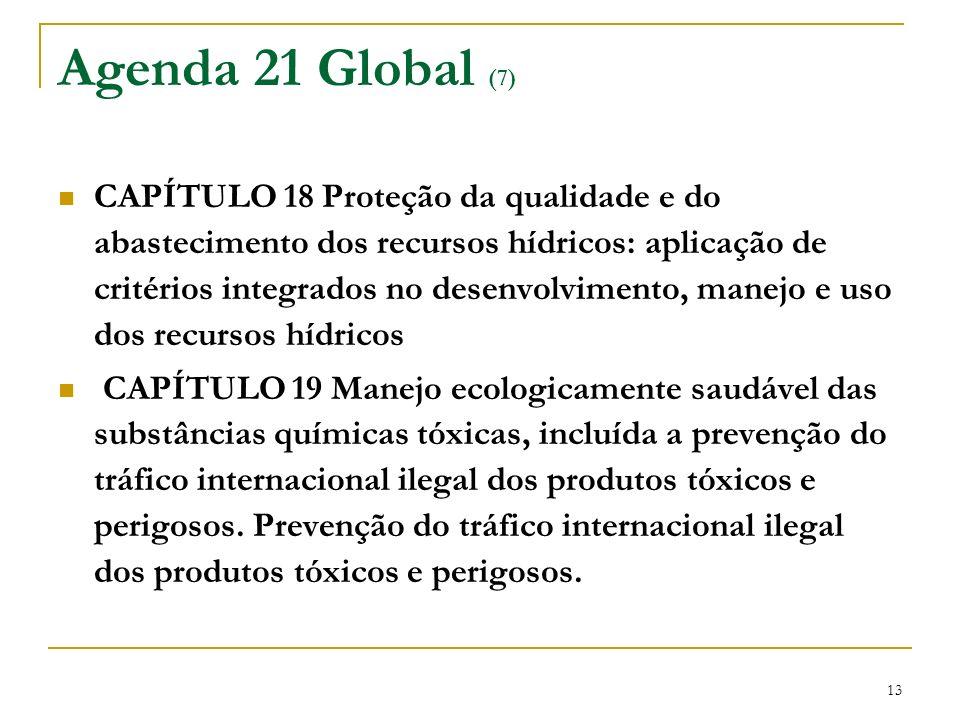 Agenda 21 Global (7)