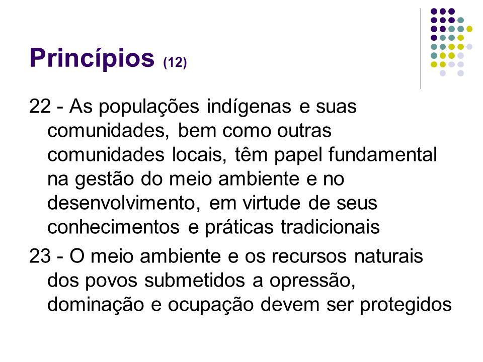 Princípios (12)