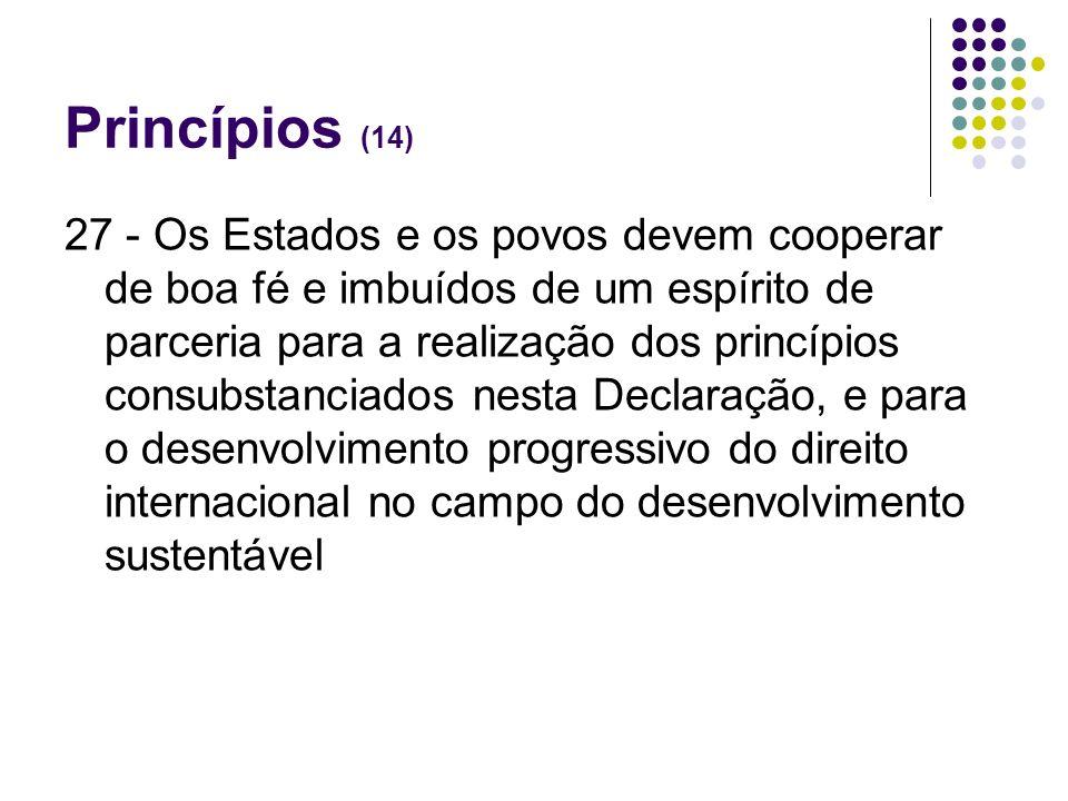 Princípios (14)