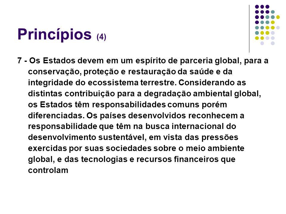 Princípios (4)