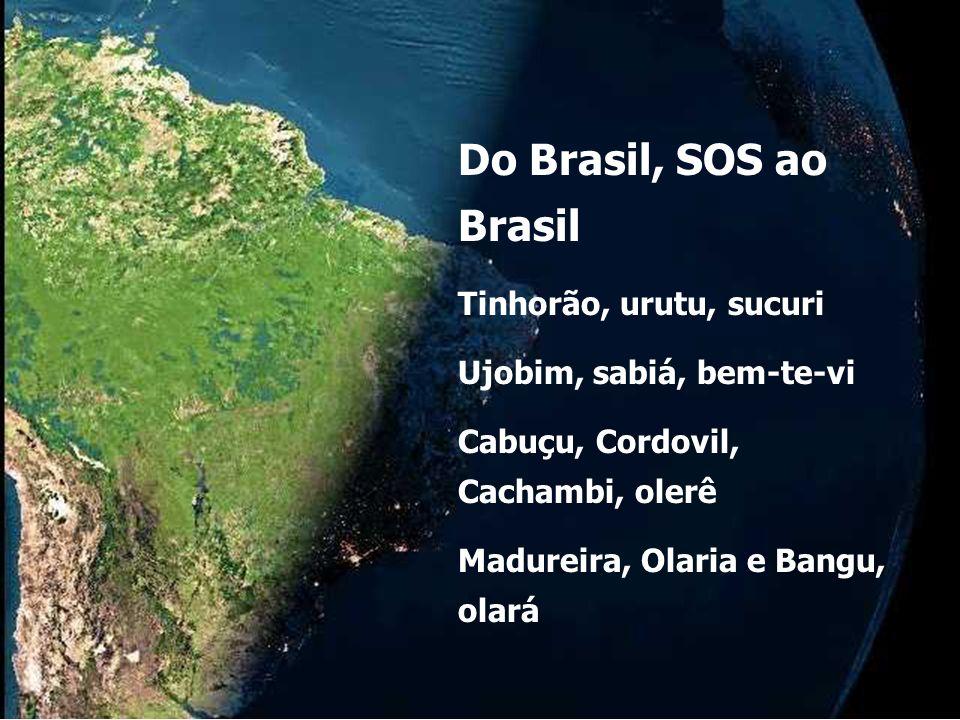 Do Brasil, SOS ao Brasil Tinhorão, urutu, sucuri