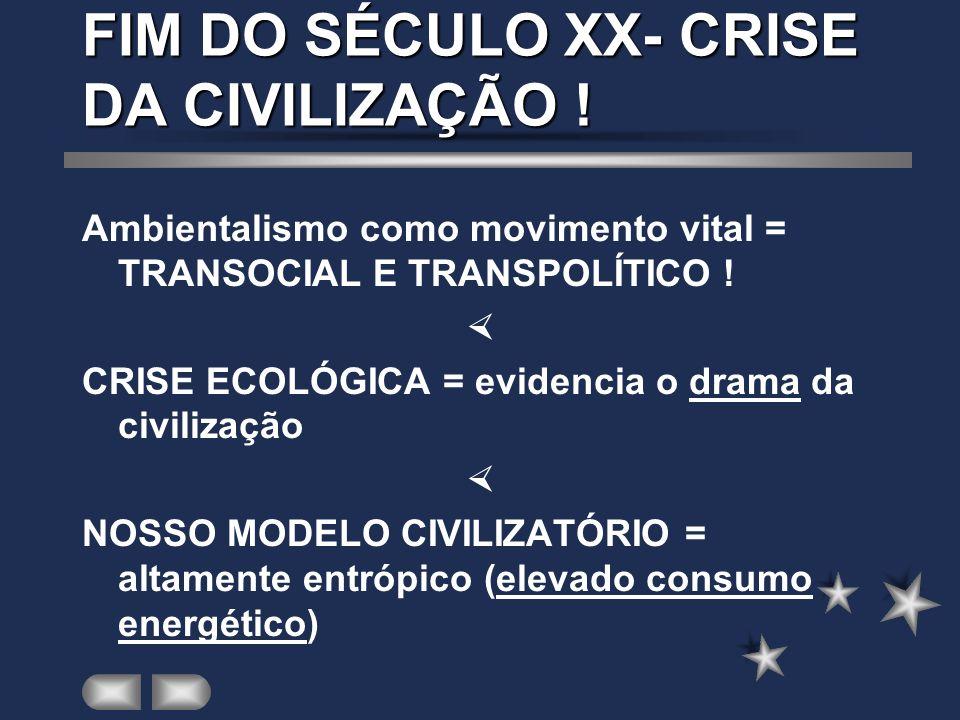FIM DO SÉCULO XX- CRISE DA CIVILIZAÇÃO !