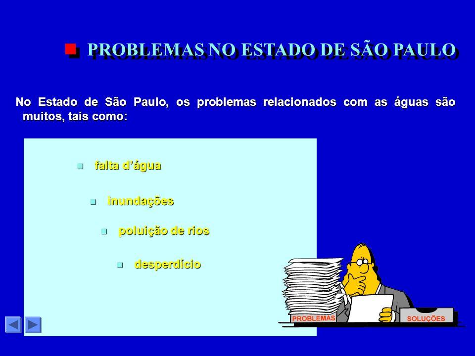 PROBLEMAS NO ESTADO DE SÃO PAULO