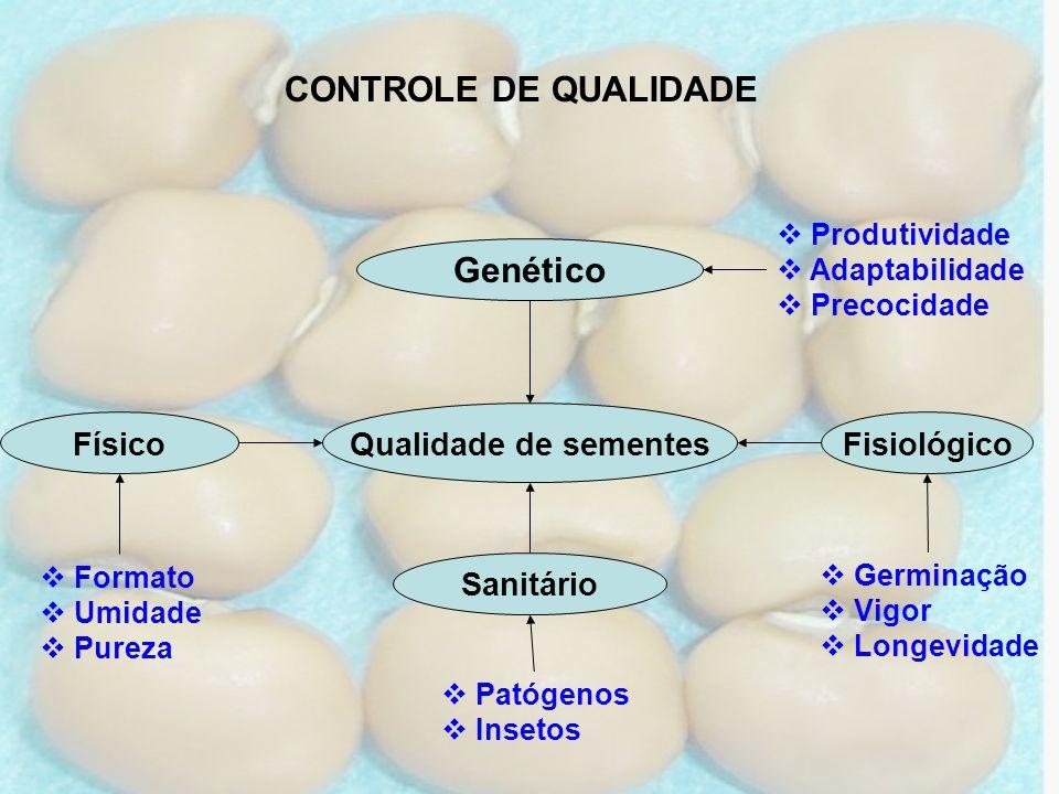 CONTROLE DE QUALIDADE Genético Qualidade de sementes Físico