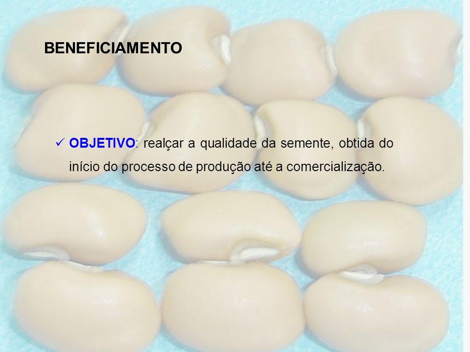 BENEFICIAMENTOOBJETIVO: realçar a qualidade da semente, obtida do início do processo de produção até a comercialização.