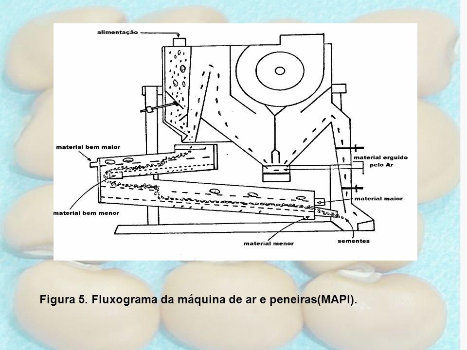 Figura 5. Fluxograma da máquina de ar e peneiras(MAPI).