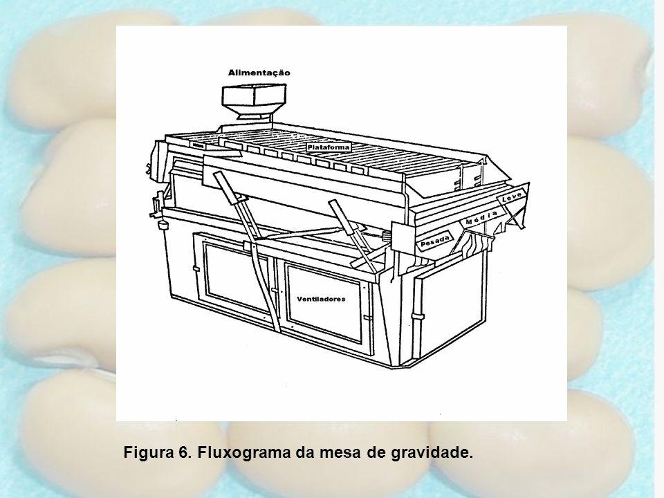 Figura 6. Fluxograma da mesa de gravidade.