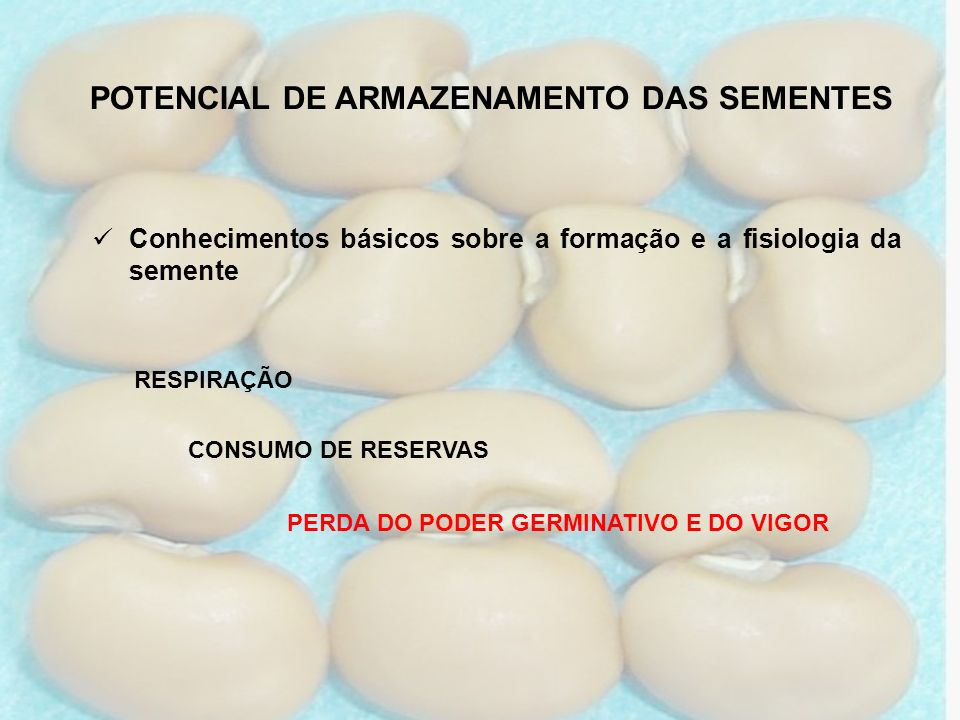 PERDA DO PODER GERMINATIVO E DO VIGOR