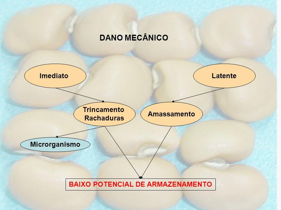 BAIXO POTENCIAL DE ARMAZENAMENTO