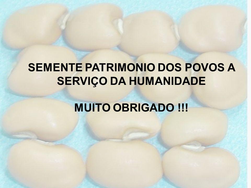 SEMENTE PATRIMONIO DOS POVOS A SERVIÇO DA HUMANIDADE