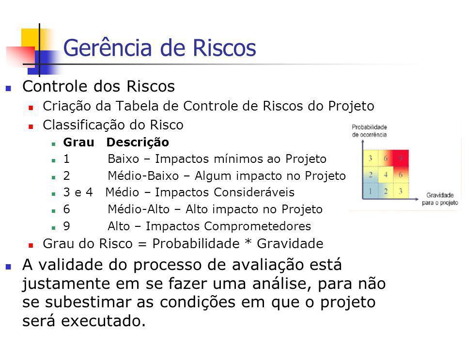 Gerência de Riscos Controle dos Riscos