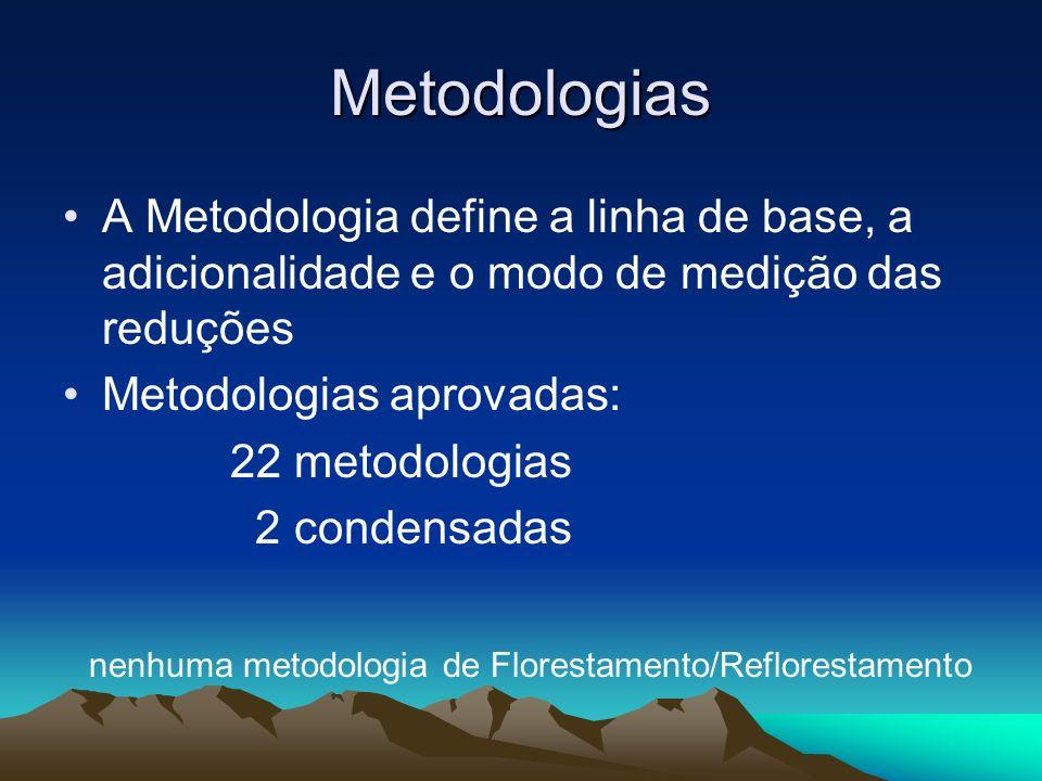Metodologias A Metodologia define a linha de base, a adicionalidade e o modo de medição das reduções.