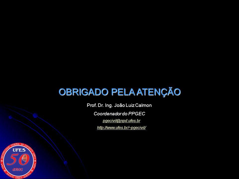 Prof. Dr. Ing. João Luiz Calmon