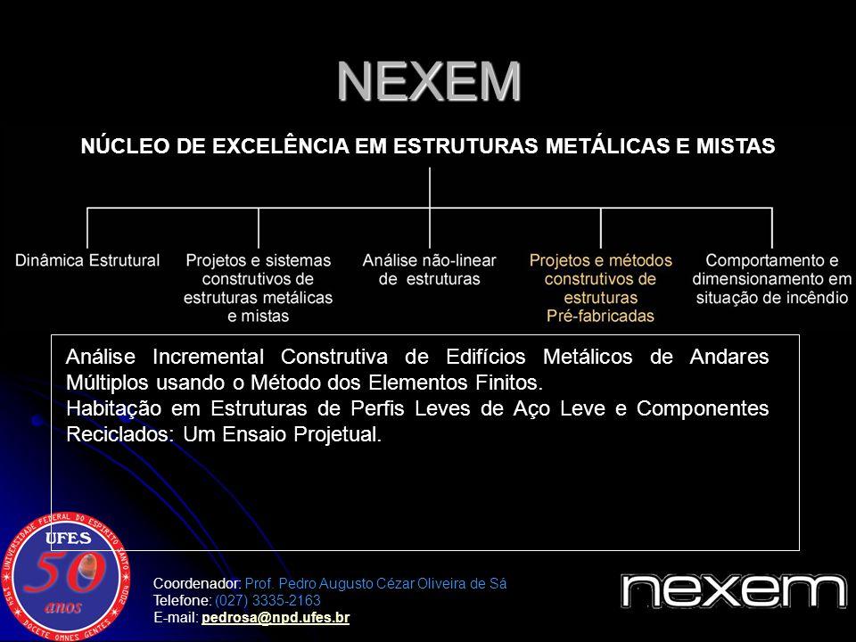 NÚCLEO DE EXCELÊNCIA EM ESTRUTURAS METÁLICAS E MISTAS