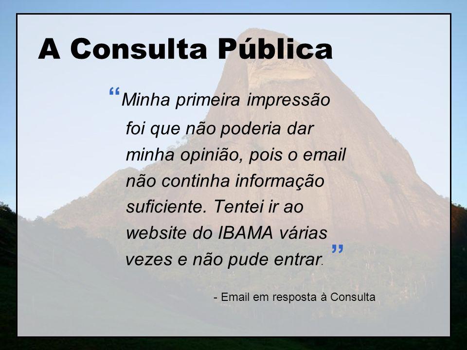 A Consulta Pública