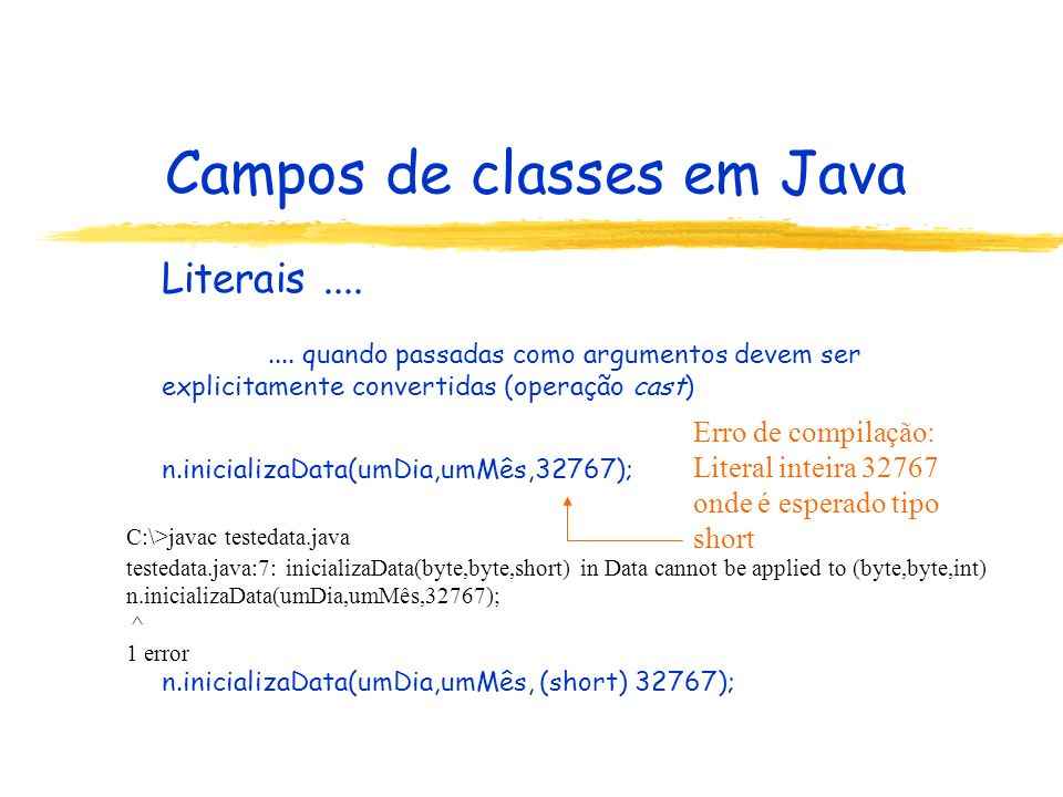 Campos de classes em Java
