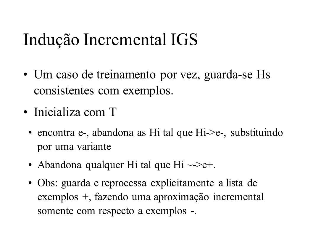 Indução Incremental IGS