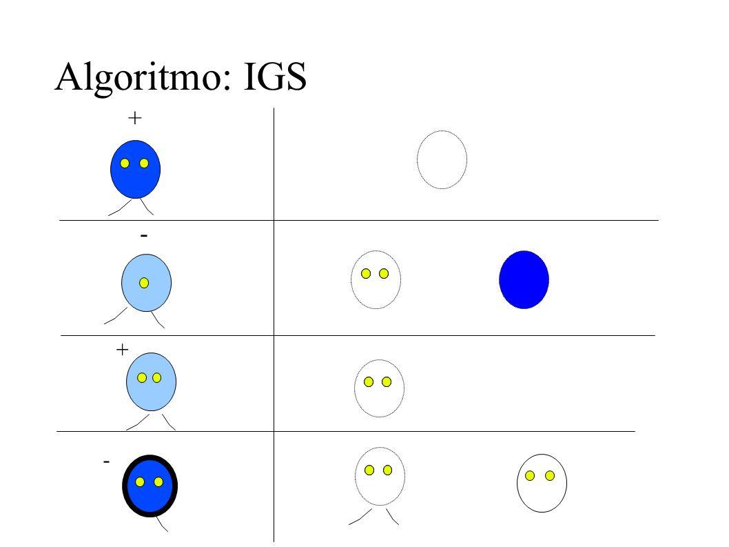 Algoritmo: IGS + - + -