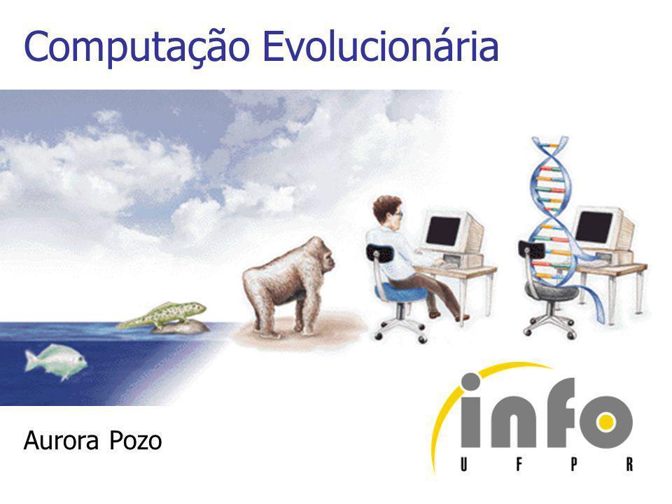 Computação Evolucionária