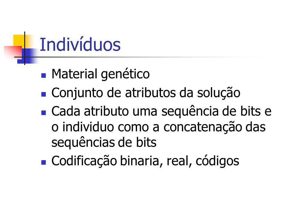Indivíduos Material genético Conjunto de atributos da solução
