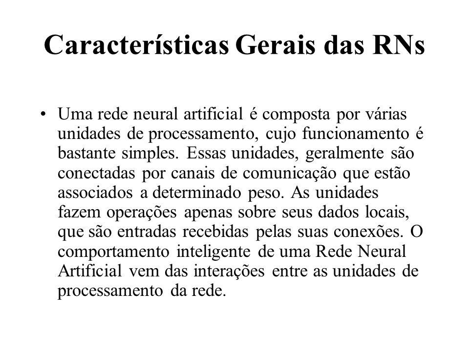 Características Gerais das RNs
