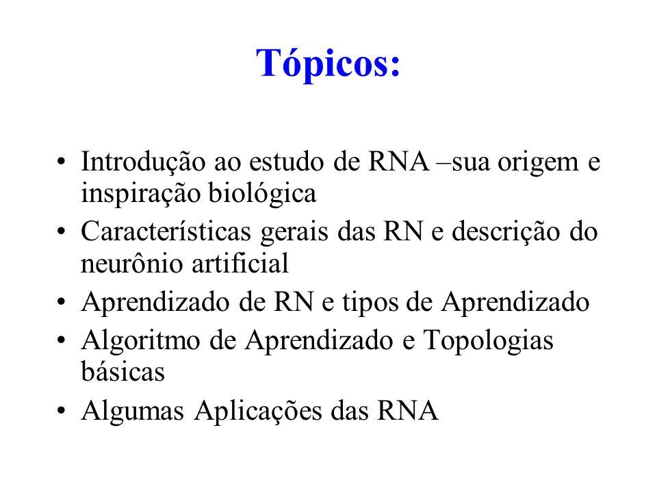 Tópicos: Introdução ao estudo de RNA –sua origem e inspiração biológica. Características gerais das RN e descrição do neurônio artificial.