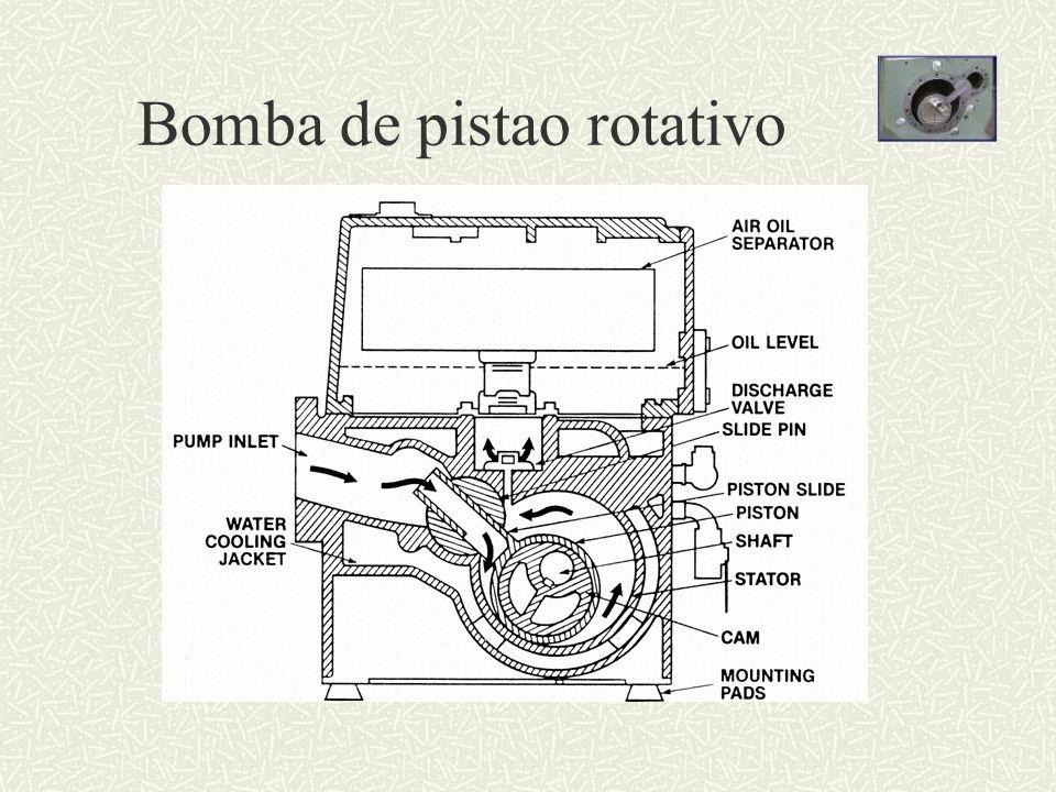 Bomba de pistao rotativo
