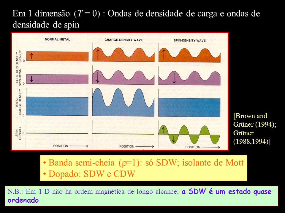 Banda semi-cheia (=1): só SDW; isolante de Mott Dopado: SDW e CDW
