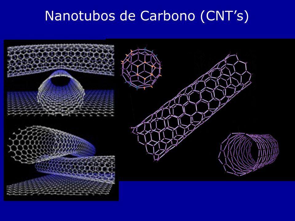 Nanotubos de Carbono (CNT's)