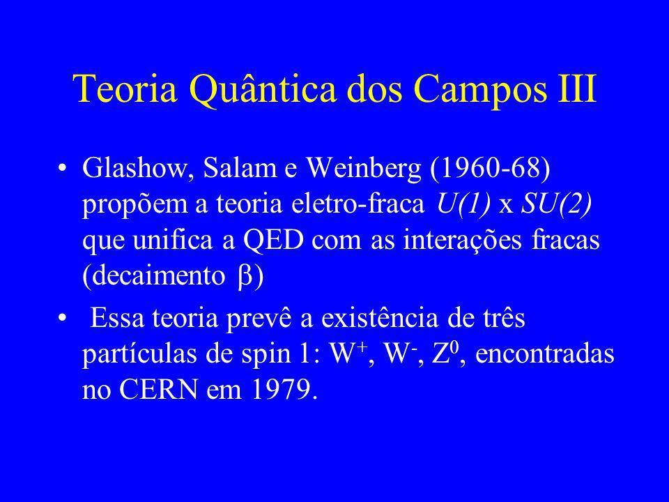 Teoria Quântica dos Campos III