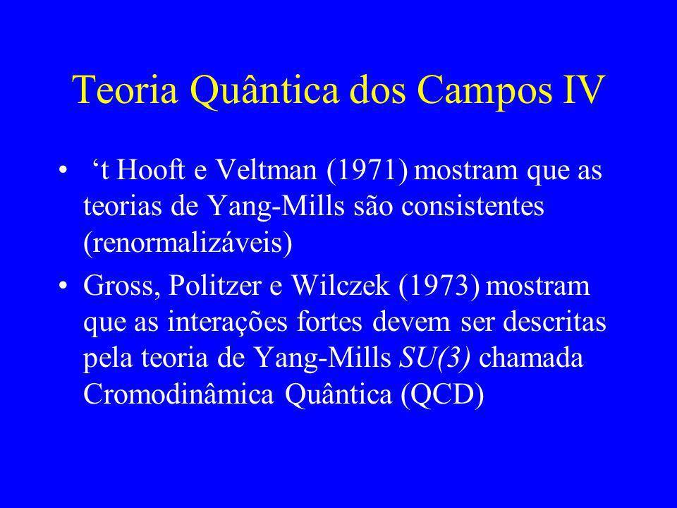 Teoria Quântica dos Campos IV