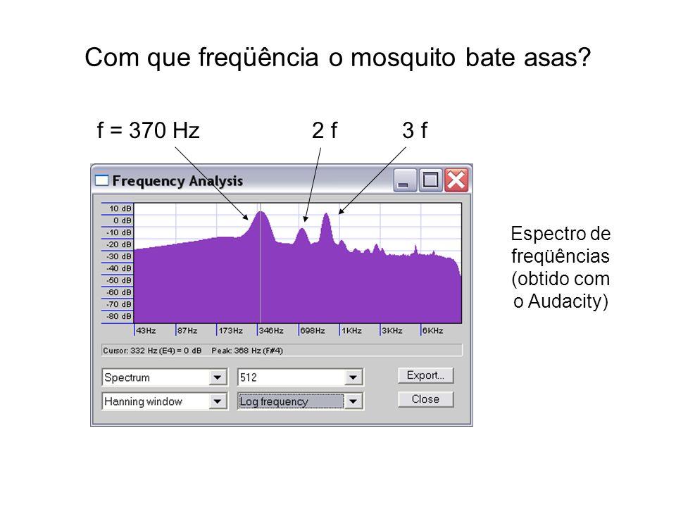 Com que freqüência o mosquito bate asas