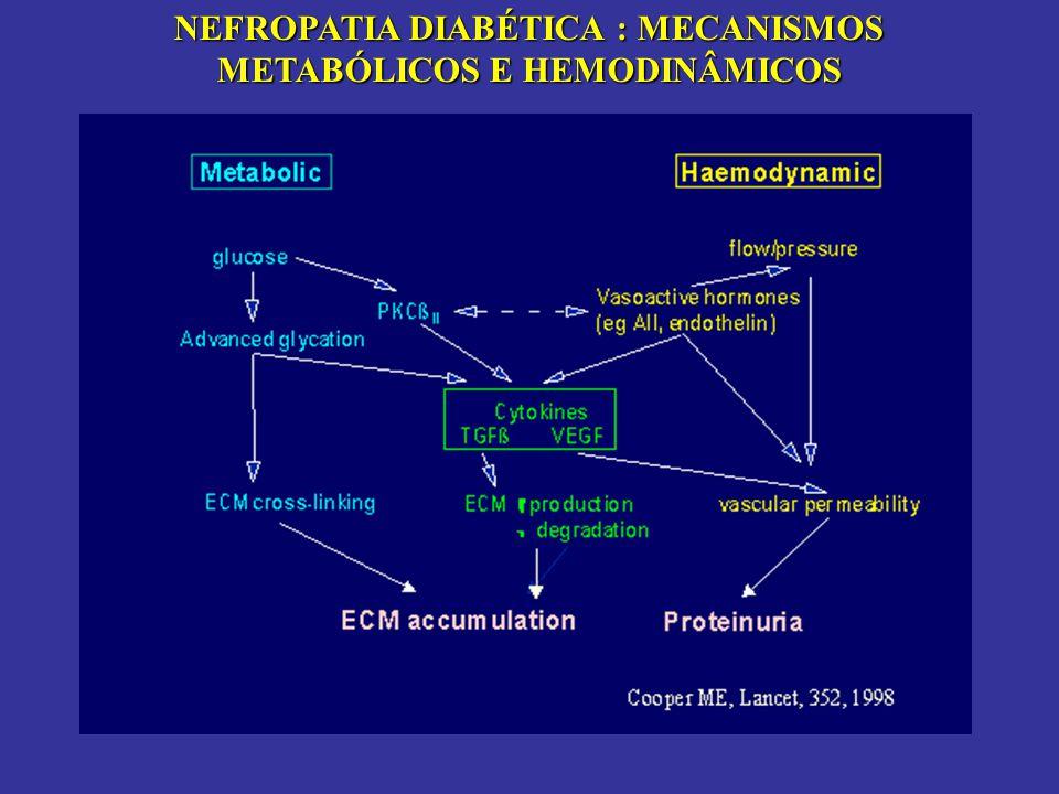 NEFROPATIA DIABÉTICA : MECANISMOS METABÓLICOS E HEMODINÂMICOS